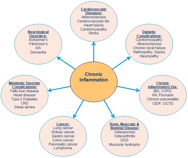 Chronic Inflammation - Inflammatory Disease